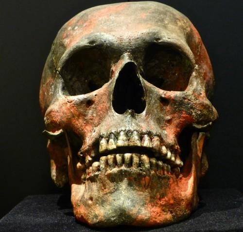 21 Crâne Seigneur Sican.jpg