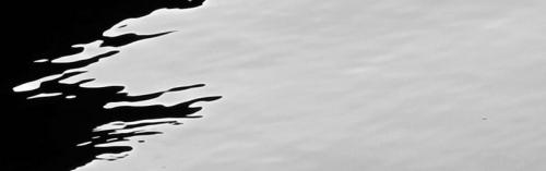 citations,jung,philosophie,spiritualité,ariaga,psychologie des profondeurs