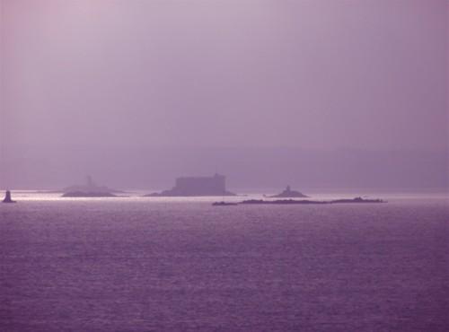 mauve sur la baie de Morlaix.jpg