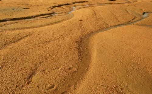 Les fleuves du Laboratoire.jpg