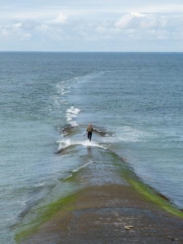 L'homme et la mer 1.jpg