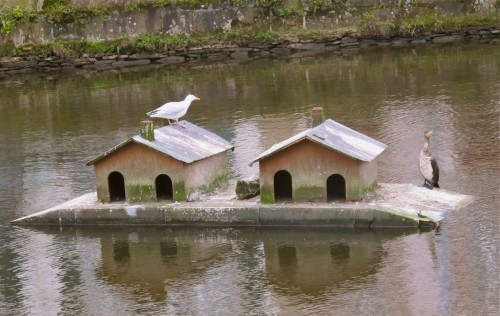 entre deux maisons.jpg